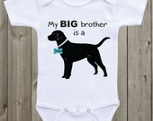 My Big brother is a Black Lab Black Lab...