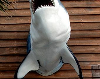 Color Photograph, Law Office, Folly Beach, South Carolina, Shark