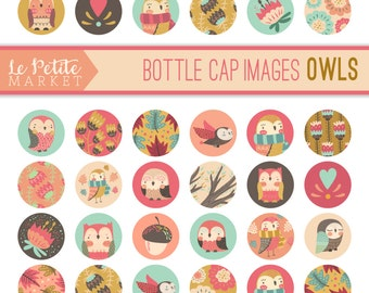 Owl Bottle Cap Images, Bottle Cap Images, One Inch Circles, Printable Owl Stickers Tags, Cute Owl Clip Art, Owl 1 Inch Circles Collage Sheet