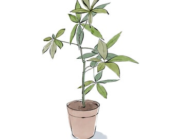 money tree digital, downloadable print, money tree plant print in watercolor and ink, downloadable, JPEG