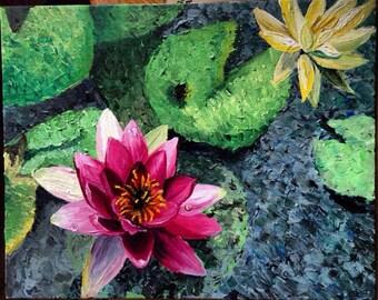 Beauty of a Lotus
