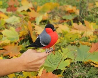 Bullfinch soft sculpture, Backyard Bird, Forest birds, Faux taxidermy, Bird art dolls, Needle felted woodland bird, Red cheeks,  Song bird