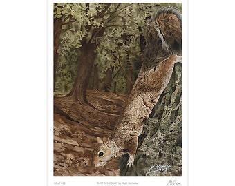 Squirrel, Grey Squirrel, Gray Squirrel, Woodland, Art, Print, Wildlife, Animal, Watercolor, Limited Edition, Giclee, Archival, 11x14