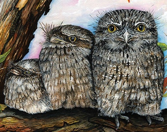 Tawny Frogmouth Greeting Card (Set of 2)