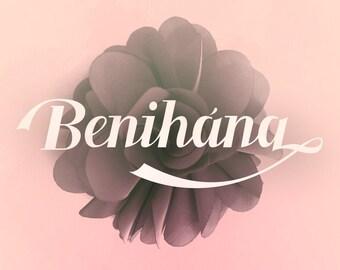 Benihana Calligraphy Font Download with Bonus
