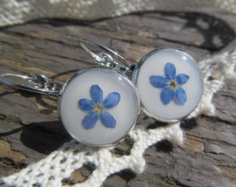 Blue earrings Forget-me-not resin Flower Jewelry real plant resin Botanical earrings Gift girlfriend Handmade earrings