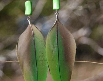 Green Parrot Feather Earrings