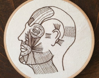 Hand embroidered muscles of facial expression | Anatomical Embroidery | Medical Gift | Science Decor