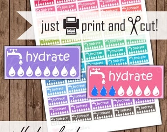 Hydrate Planner Stickers, Printable Water Intake Tracker Stickers, Daily Stickers