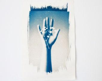 The Anatomy Lesson (2) - Cyanotype Print
