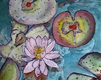 Koi & Lotus illustration
