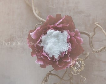 Newborn Digital Backdrops, Newborn digital, newborn digital backdrop, digital prop flower nest, baby nest,photographie bébé,Neugeborene