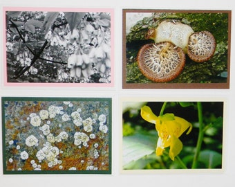 Stationery set, 4 photo cards, original photographs on acid free blank cards Select 3 send a bit of snail mail Nice touch for handmade charm
