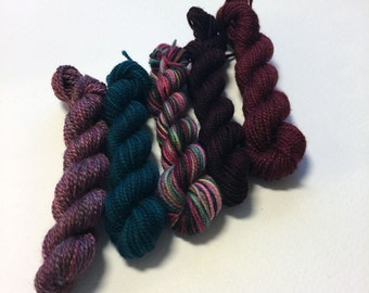 Sock Yarn Mini Skein Set - Vineyard - 5 Mini Skeins