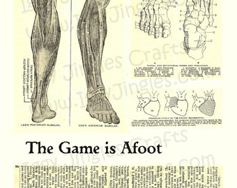 Vintage Image Anatomical Feet Bones and Muscles, Sepia Tone Collage Sheets