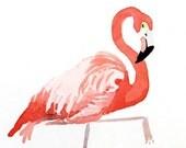 Flamigo Art  Bird Watercolor PRINT, Pink painting flamingo painting, Childs room art, Nature zoo animal, Coral wall art, Kid's room nurseryB