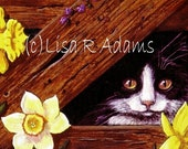 Black Tuxedo Cat Blank Note Card from Original Art Creationarts Daffodils