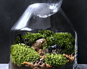Glass Terrarium with Live Plants and Miniature Horses