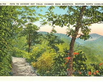 Vintage North Carolina Postcard - Path to Hickory Nut Falls, Chimney Rock (Unused)