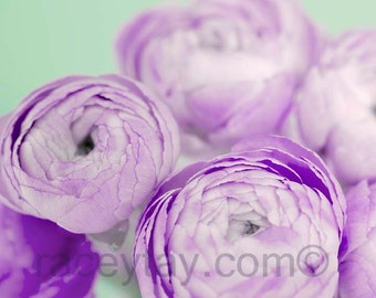 Ranunculus, Mauve, Mint Green, Pastel, Flower Photography, Purple and Mint, Girl Nursery Decor