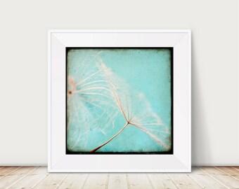 Skandinavian Summer 03 - Fine Art Print turquoise flower seed Dandelion TTV vintage Macro Nature Photography