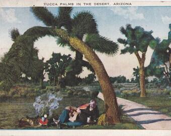 Yucca Palms in the Desert- 1920s Antique Postcard- Phoenix, Arizona- Desert Scenery- A O Boeres- Southwest Decor- Paper Ephemera- Used