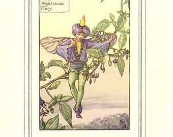 THE NIGHTSHADE FAIRY Original Antique c. 1940 Color Plate The Book of the Flower Fairies Cicely Barker