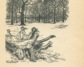Arthur Rackham Illustration Peter Pan in Kensington Gardens,  Black and White Vintage Print