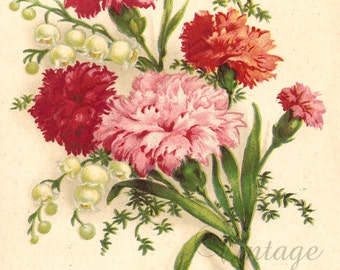 Pink Carnations & Lily of the Valley Antique French Postcard Chromolithograph Chromo Post Card from Vintage Paper Attic