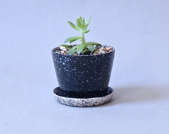 Black Speckled Planter Mini Planter with Attached Saucer All in One Planter Made to Order