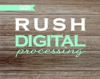 RUSH ORDER-Get your digital file within 24 hours!