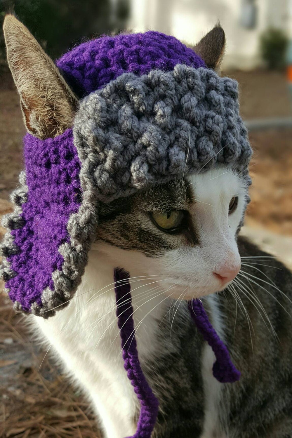 Trapper Hat For Cats Bomber Hat For Cats Hats For Cats