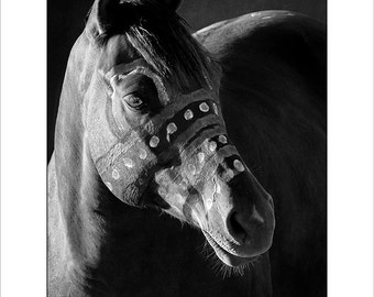 Black and White fine art print of Blue Hail Storm - Lakota War Pony