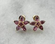 Pink Star Poinsettias: Lovely Rhodolite Garnet Stud Earrings YH6DQL-R