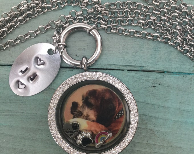 39 mm Crystal stainless steel Rainbow bridge pet memorial locket~floating charms ~ personalized