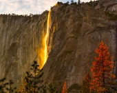 Yosemite Firefall Waterfall Photo - Nature Landscape Photograph - Yosemite National Park El Capitan - Sunset Outdoor California Photo