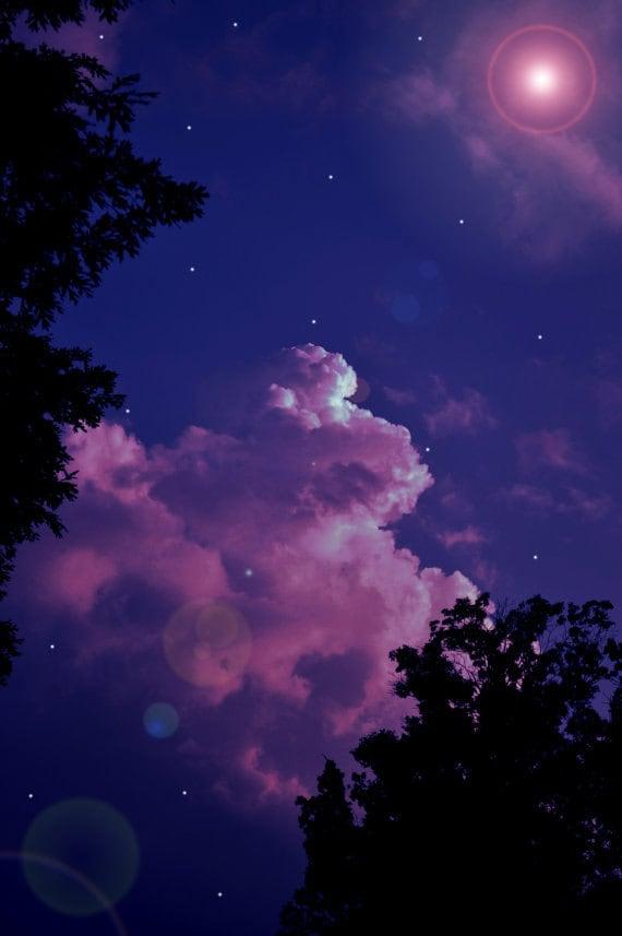 Items similar to Purple Moon Deep Dark Night Digital Art Photo Print of trees with a purple sky ...
