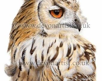 Bird print Eagle Owl, watercolour art bird of prey, giclee archival print, realistic bird lover gift, A4 or A5 Size