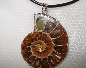 AMMONITE FOSSIL  PENDANT on leather cord