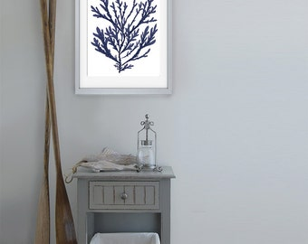 Navy Blue Nautical Print - Blue Coral art (15) Bathroom decor coral wall art coral beach decor coastal decor beach Coastal art marine print