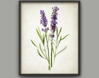 Lavender Wall Art lavender poster | etsy