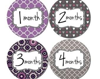 Baby Month Stickers- Milestone Sticker- Baby Girl Month Stickers- Monthly Stickers- 12 month stickers- Milestone Baby Month Stickers- G46