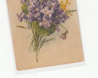 Signed Klein Antique Postcard Spray Of Purple Flowers