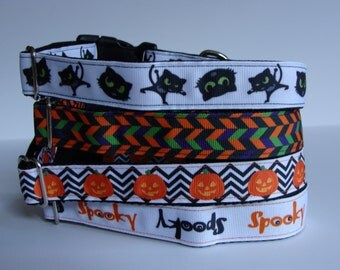 READY TO SHIP! Halloween Dog Collars - Scaredy Cat, Herringbone, Pumpkin, Spooky
