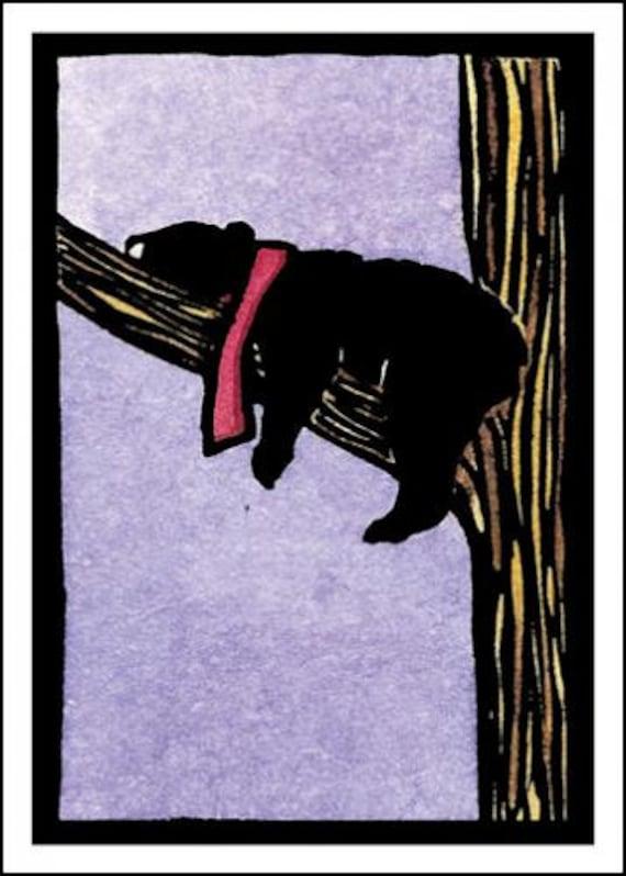 Snoozin - Single Blank Sarah Angst Holiday Greeting Card - Black Bear in a Tree