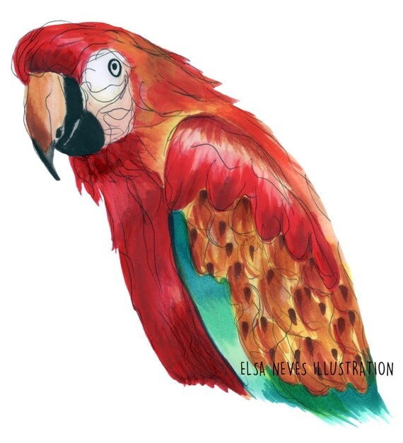 Red Tropical Parrot Art Print