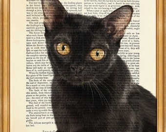Bombay Cat DICTIONARY ART PRINT on Vintage Dictionary Page 10'' x 8'' from Antique Book