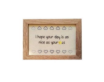 I Hope Your Day is as Nice as Your *ss framed cross stitch