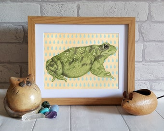 Toad Art Print, frog illustration print, animal art print, nature print, wall art print, home decor, dorm wall art, unusual gift idea,