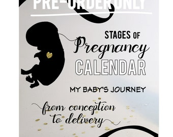Stages of Pregnancy Calendar - My Baby's Journey { *PRE-ORDER ONLY* }